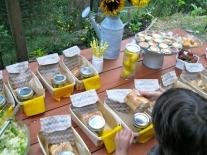 picnic 3