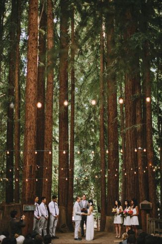 WeddingCeremonyForrest